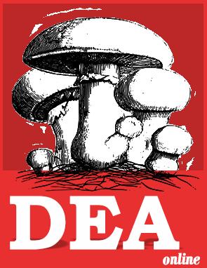 نرم افزار dea